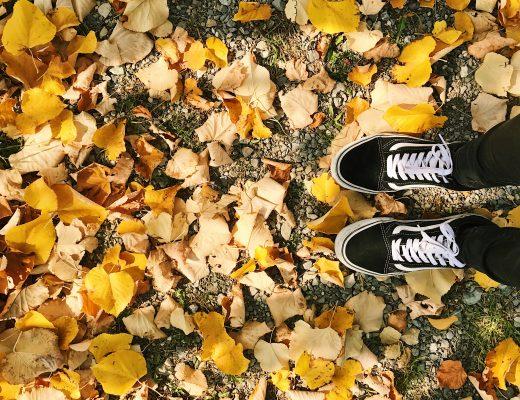 automne inspirations pinterest